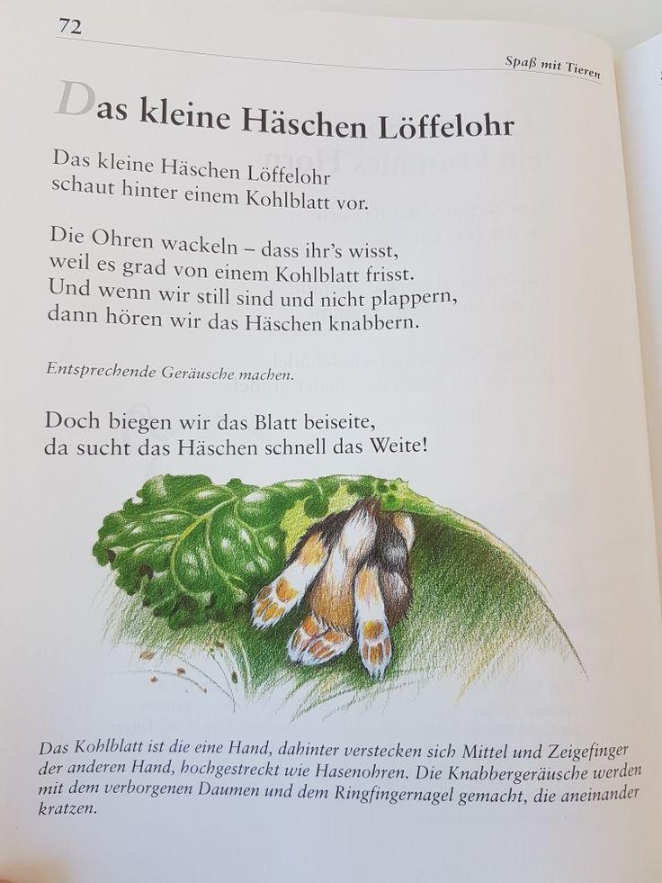 Das kleine Häschen Löffelhohr #fingerspiel #krippe #kita #kindergarten #kind #reim #gedicht #erzieherin #erzieher #hase