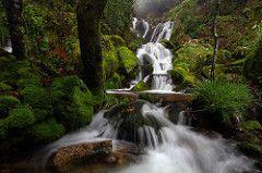 Cascadas del Monte Aloia, Galicia, Espana - La Primavera esta Llegando (Spring is Coming) (Silvia and Juan) Tags: espaa…