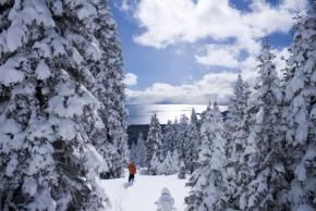 50 Things to Do in Lake Tahoe in Winter   7x7