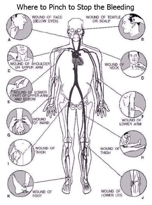 Where to pinch to stop the bleeding