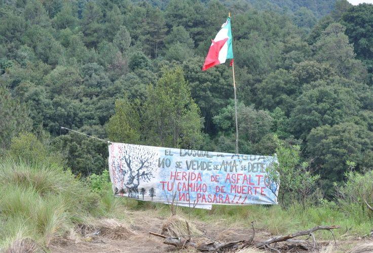 http://www.defensamadretierra.mx/nuevo/2017/03/02/academicos-hablan-en-defensa-de-la-tierra-areas-naturales-protegidas/
