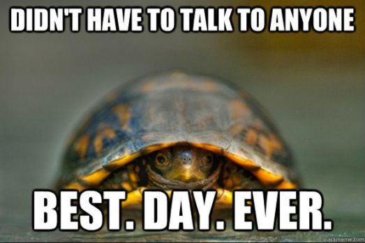 Oh happy day for the introvert!
