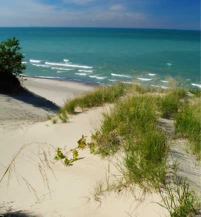 Dunes along lake michigan porter county indiana my - Regional park swimming pool midwest city ok ...