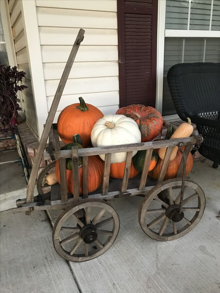 Old goat cart, found at round top, decorated for fall