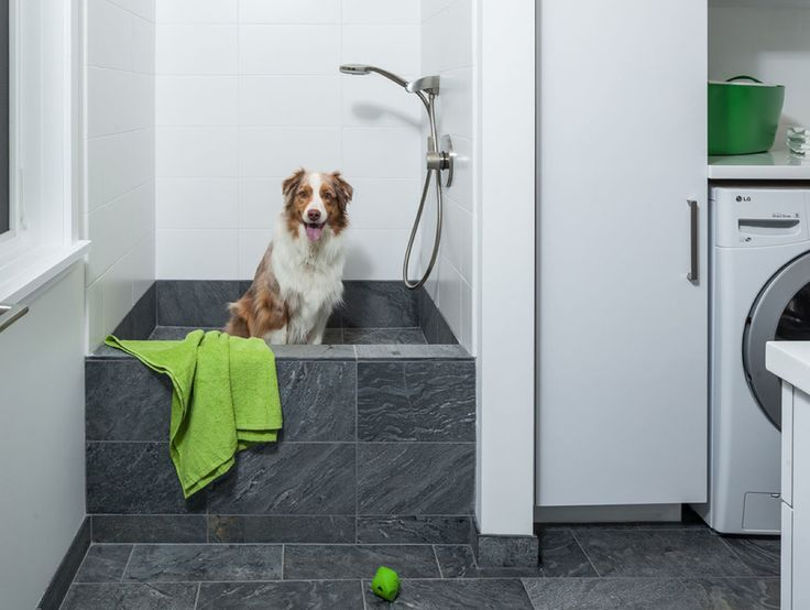 dog bath in laundry room - good bc no escape except front