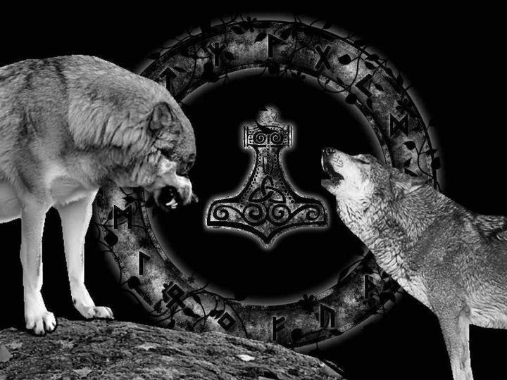 Geri Amp Freki Odin S Wolves Odinswolf Viking Art