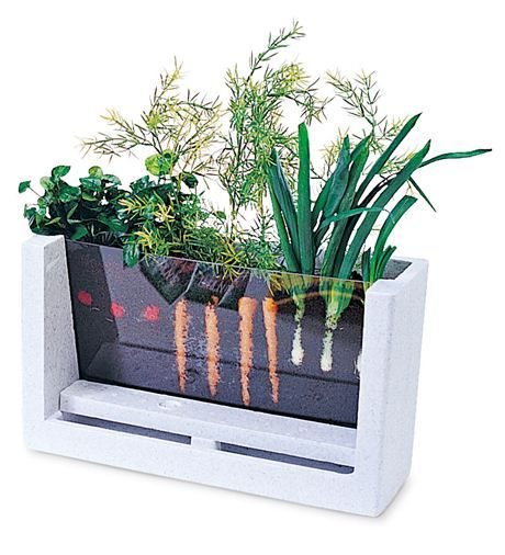 Rootvue farm garden laboratory kit lets kids watch seedlings as they grow into vegetables