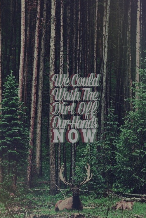 """And all of a sudden...a simple song lyric such as this holds so much meaning and is so realistic.  Local Natives - """"Mt. Washington"""""""