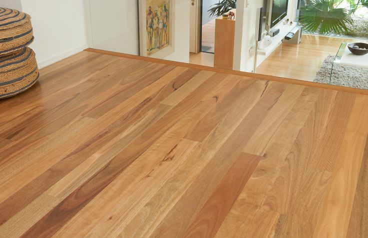 nsw spotted gum floors - Google Search