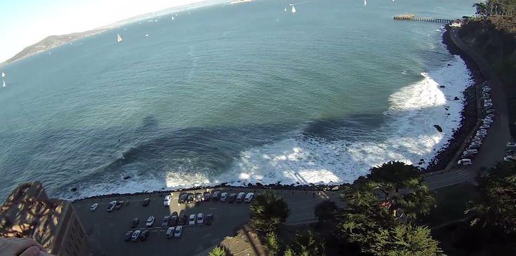 SÃO FRANCISCO: Golden Gate Bridge, Restaurantes e Leões Marinhos