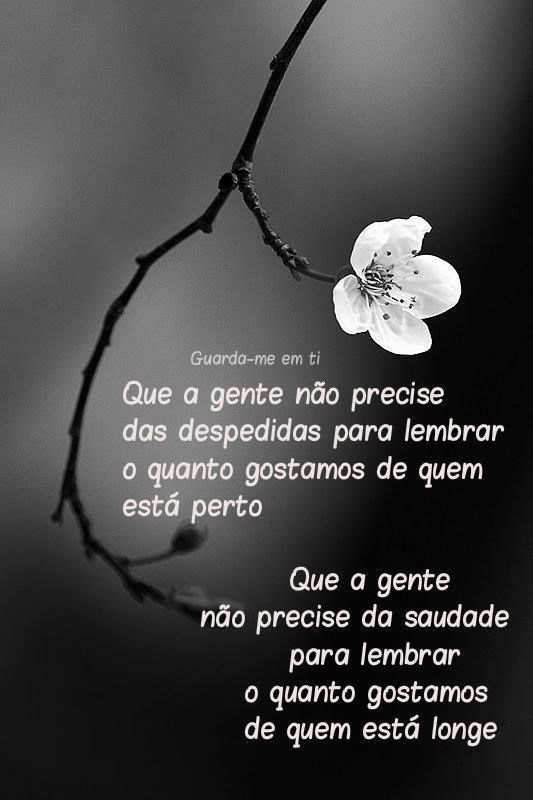 25 best ideas about frases de saudades eternas on for Frases de memento