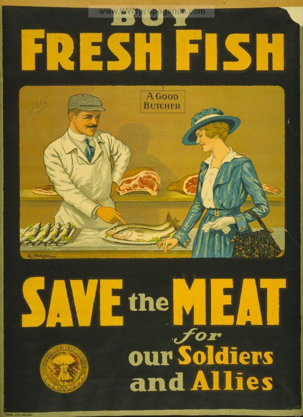 Examples of Propaganda from WW1 | Buy fresh fish, save the meat for our soldiers and allies.
