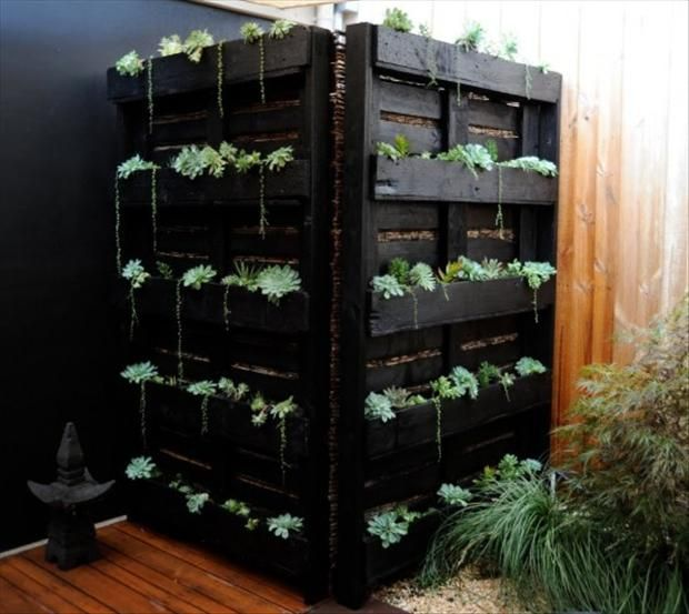Pallet garden wall divider. I would like to try my hand at this for a client.Ideas, Pallets Gardens, Outdoor Shower, Pallets Planters, Wooden Pallets, Vertical Gardens, Wood Pallets, Old Pallets, Pallets Projects