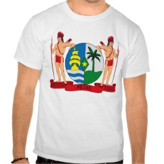 latin american flag clothes | Latin American Flags T-shirts, Shirts and Custom Latin American Flags ...
