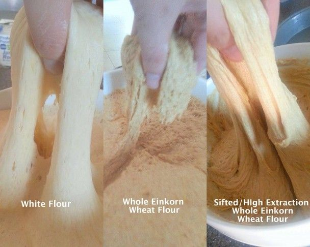 Tips and Tricks for Baking with Fresh-Ground Einkorn flour, via Einkorn.com