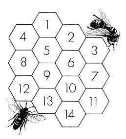 Картинки по запросу рисунок соты пчелы