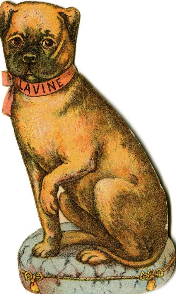 Victorian Trade Card die-cut LAVINE SOAP Hartford CT dog