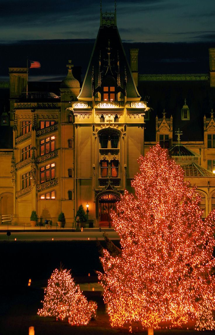 Christmas Tree in front of Biltmore House