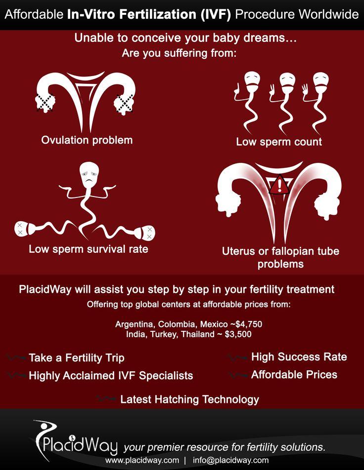 Fertility Treatments   Affordable #In-Vitro Fertilization(IVF) Procedure Worldwide