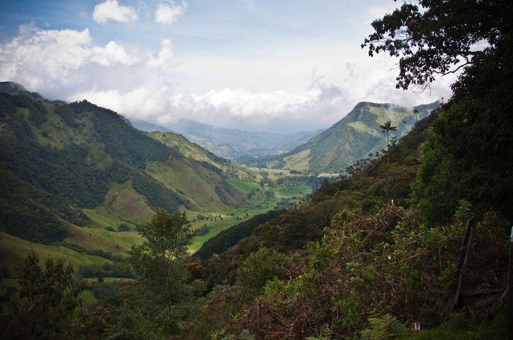 Nuevo color: verde montaña de Colombia