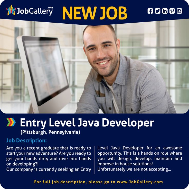 entry level java developer