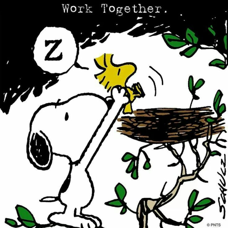 Snoopy Putting Woodstock Back to Bed in His Nest