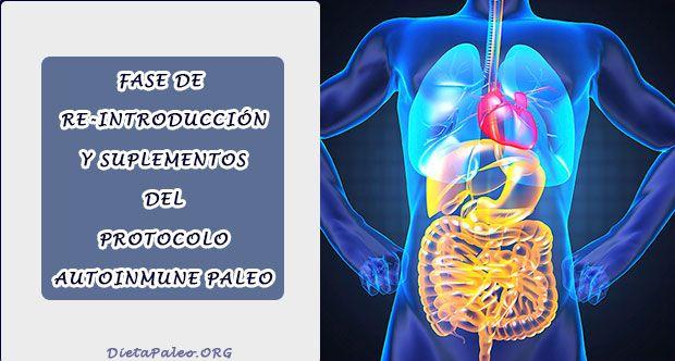 Fase de Reintroducción y Suplementos del Protocolo Autoinmune Paleo - Dieta Paleo