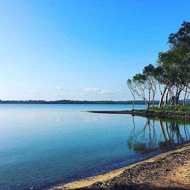 Gazing out from the foreshore towards Lake Weyba. Situated a short drive from Noosa Heads, Lake Weyba is the perfect spot for activities including horse riding, fishing, canoeing and birdwatching.