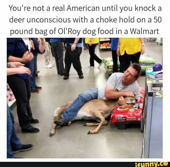 That guy gets credit for chasing down a deer in Walmart and being able to get a choke hold on it in the first place