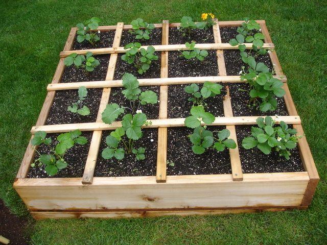 Home+Gardening+Services