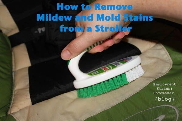best 25 remove mildew stains ideas on pinterest mildew