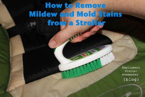 How to Clean Mildew/Mold Stains off a Stroller!