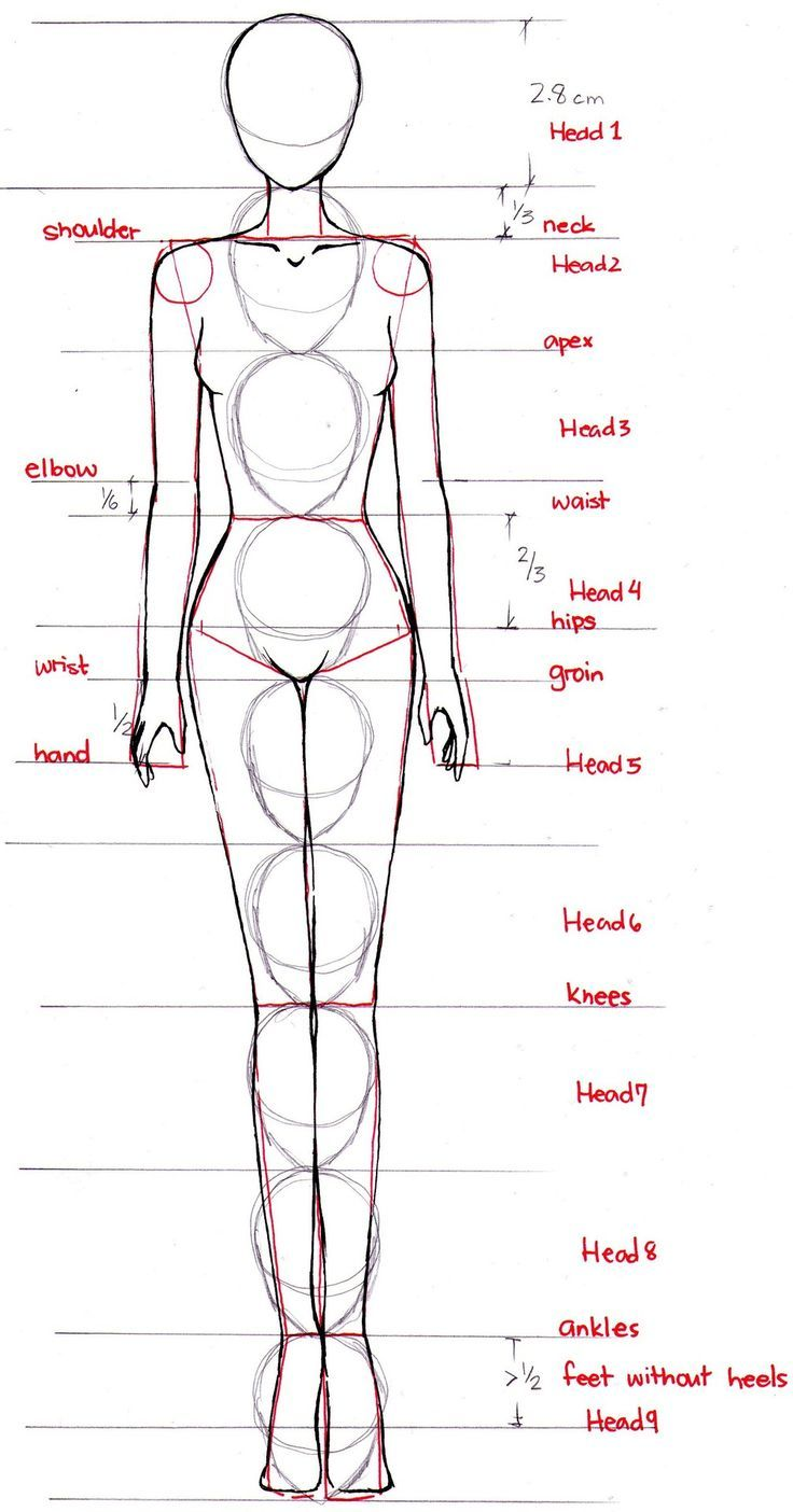fashion sketch body proportions.....Brings back art school memories!: