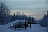 Alaskan Pipeline... Once upon a time... my fingers touched this