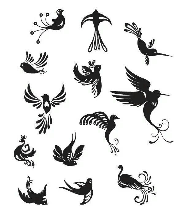 Phoenix and bird of paradise