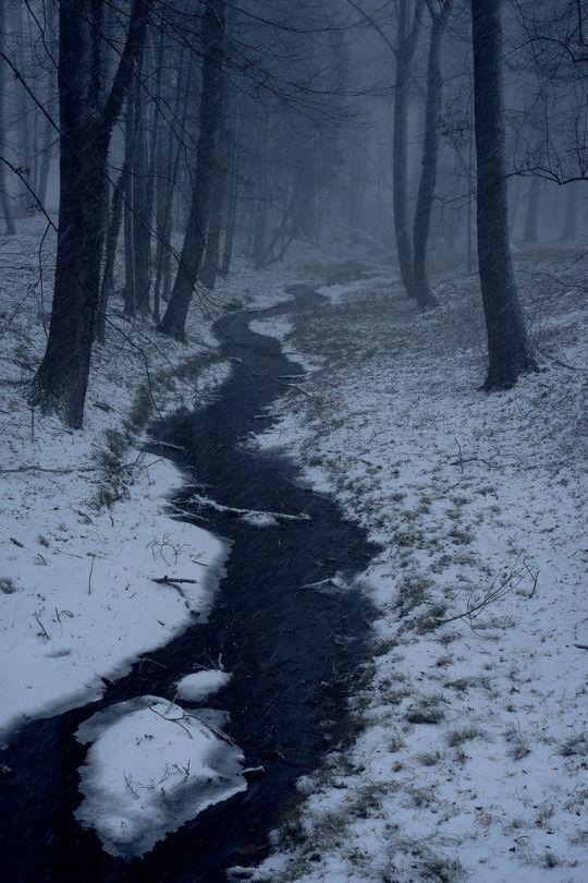 Winterstorm   By Pascal Arabatzis   Vienna, Austria
