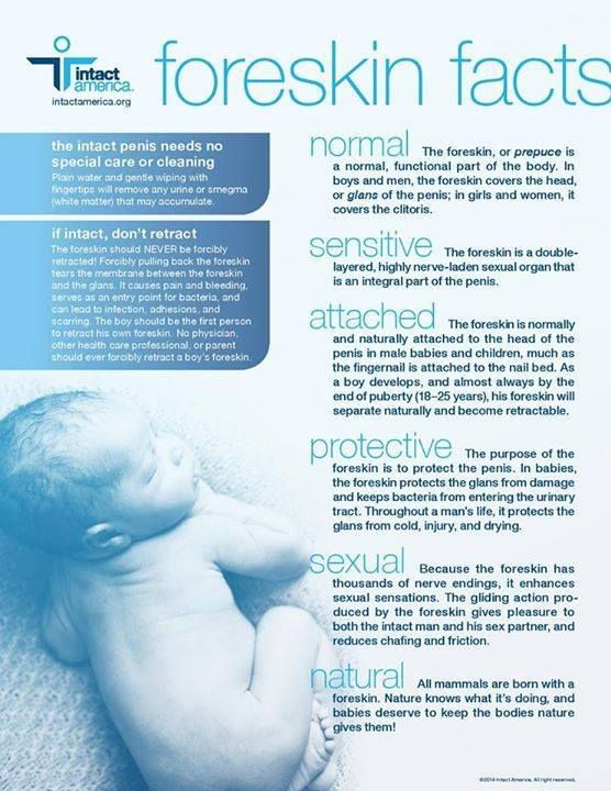 Foreskin facts - Circumcision