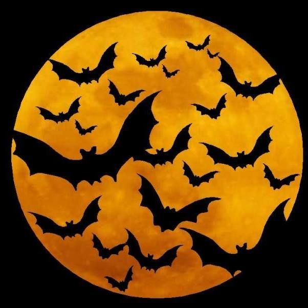 49 best Halloween Witches images on Pinterest | Halloween moon ...
