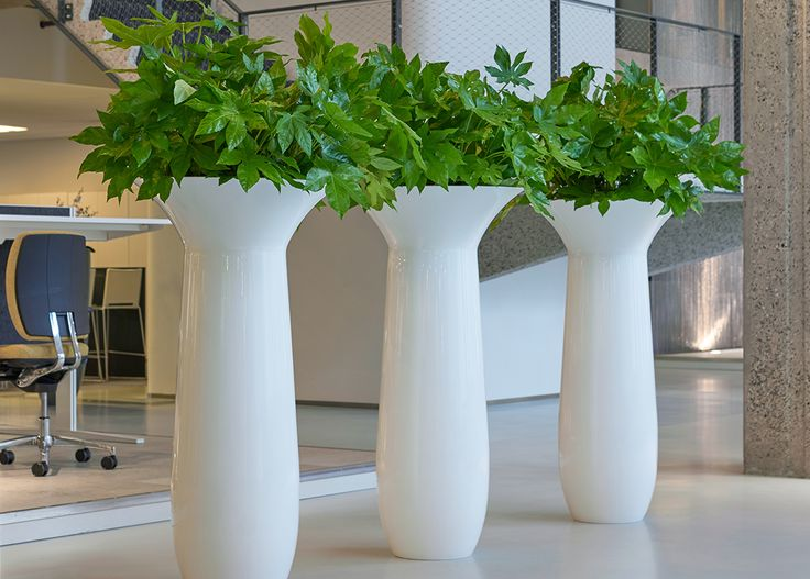 25 beste idee n over binnen plantenbakken op pinterest for Carla de klerk interieur