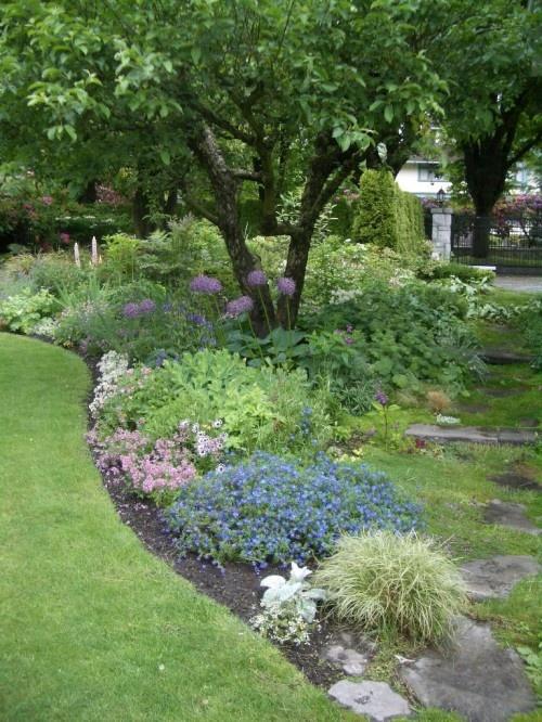 17 best images about garden under trees on pinterest for Garden design under gum trees