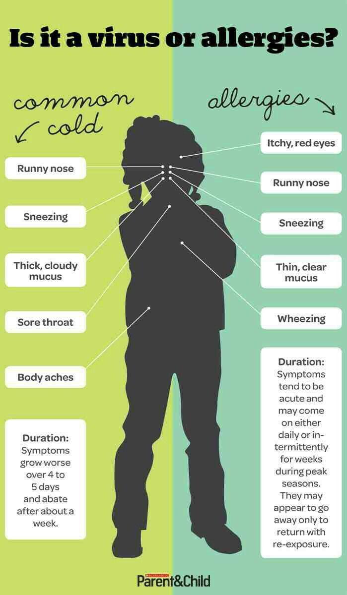 Common cold vs. Allergies