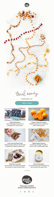 Trail Ready: Organic Blueberries, Orange Slices