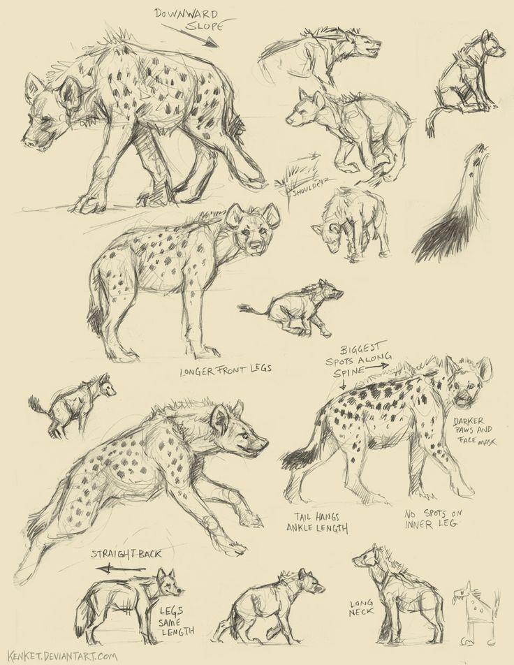Art. Hyenas