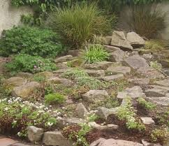 how to build a rockery - Google Search