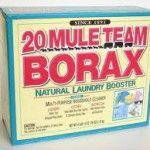 Remove mold with borax and vinegar