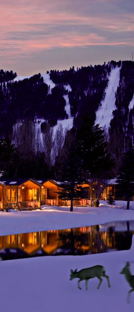 We stayed here for our honeymoon! The Rustic Inn. Spectacular!!  Jackson Hole, WY...The Grand Tetons! 10/2010