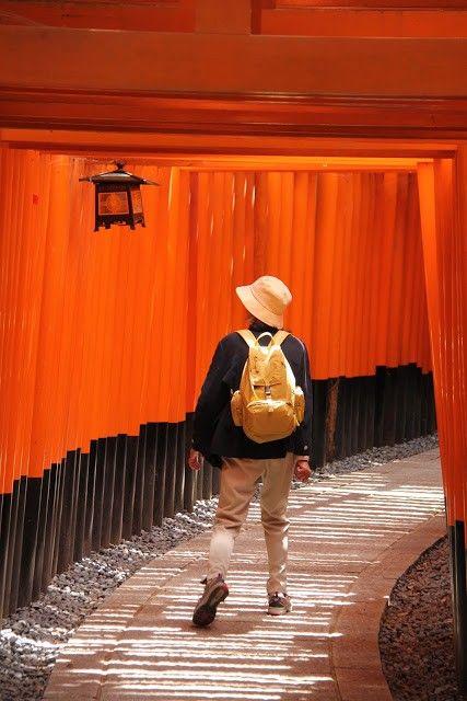 Fushimi Inari Taisha   Zenbu Tours