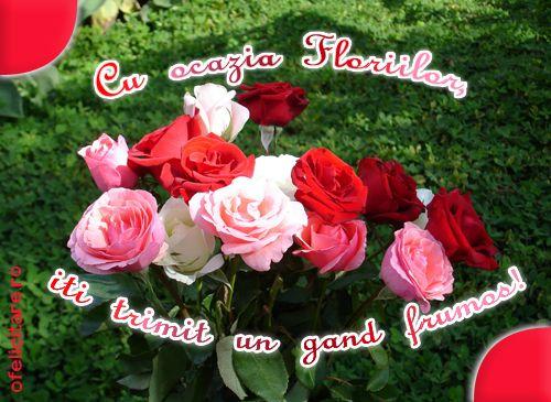 Felicitare de Florii cu mesajul Cu ocazia Floriilor, iti trimit un gand frumos!