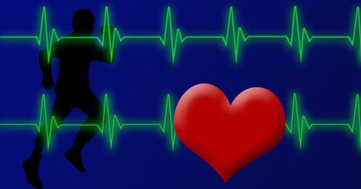 La frencuencia cardíaca y el consumo de oxígeno. Los sistemas cardiovascular y respiratorio están conectados de manera tal que ninguno puede funcionar sin el otro. Estos dos sistemas trabajan en conjunto para permitir que ocurra el metabolismo en todos los sistemas del cuerpo, entregando oxígeno y removiendo residuos.