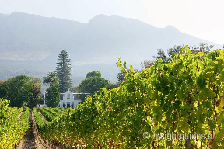 Wijngoed Buitenverwachting, Zuid-Afrika.